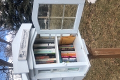 littlelibrary-fortcollins-colorado-2